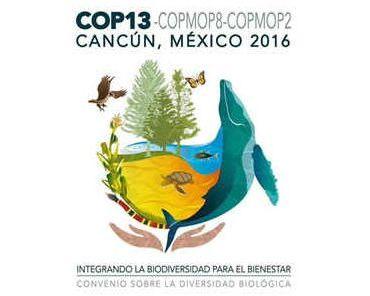 Результатами конференции ООН по биоразнообразия стало достижение ряда соглашений